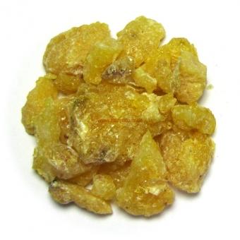 KIEFERNHARZ - natur - 20 g