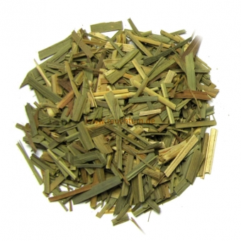 Zitronengras - Lemongras