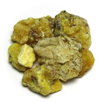 SEE-KIEFERNHARZ - natur - 20 g