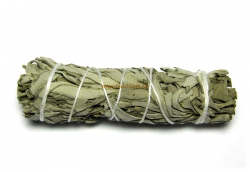 white sage bundle klein