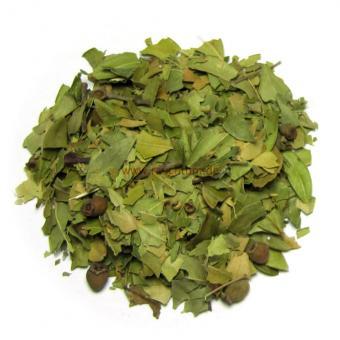 Myrte Blätter